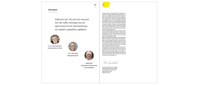Zwo elf redesign erscheinungsbild dji for Buero zwo design